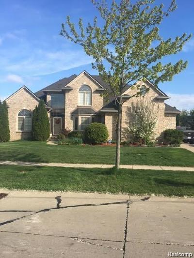 Rochester Hills Single Family Home For Sale: 1094 Rochelle