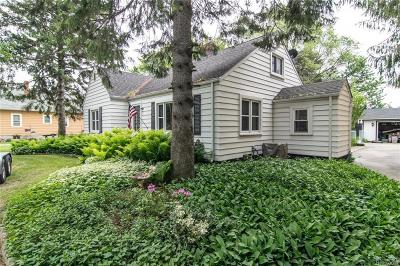 Saint Clair County, St. Clair County Single Family Home For Sale: 3181 W Water Street