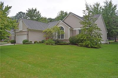 Rochester Single Family Home For Sale: 3388 Fairgrove Terrace