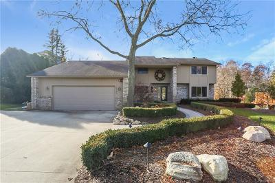 Single Family Home For Sale: 10735 Oxbow Lakeshore Drive