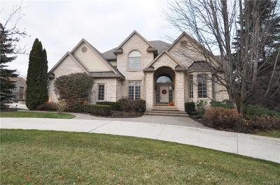 ROCHESTER Single Family Home For Sale: 3894 Teakwood Lane