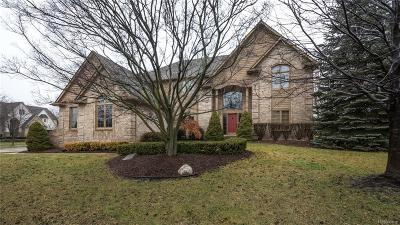 Novi Single Family Home For Sale: 47240 Northumberland Street