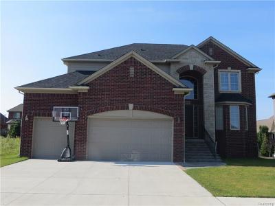 Washington Twp Single Family Home For Sale: 62791 Franklin Park Drive