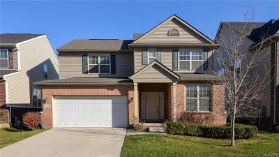 Novi Single Family Home For Sale: 27424 Victoria Road