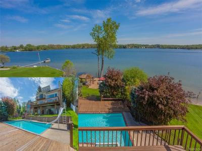 West Bloomfield, West Bloomfield Twp Single Family Home For Sale: 2514 Comfort Street