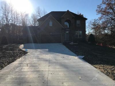West Bloomfield, West Bloomfield Twp Single Family Home For Sale: 7405 Pontiac Trail
