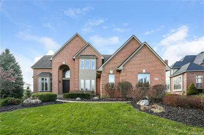Northville Twp Single Family Home For Sale: 18549 Steep Hollow Court