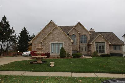 Sterling Heights Single Family Home For Sale: 42994 Pond View Drive
