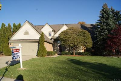 Novi Single Family Home For Sale: 39478 Squire Road