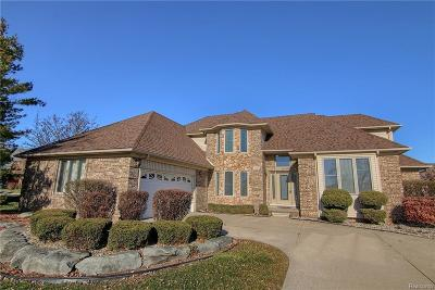 STERLING HEIGHTS Single Family Home For Sale: 41167 Marksway Court