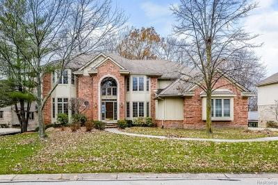Farmington, Farmington Hills Single Family Home For Sale: 27131 Winchester Court