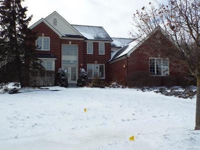 Novi Single Family Home For Sale: 45479 Kimberly Court