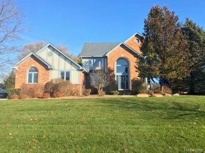 Oakland Twp Single Family Home For Sale: 348 Oakbridge
