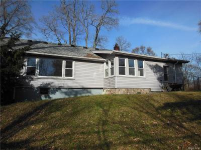 Wixom Single Family Home For Sale: 2550 Loon Lake Road