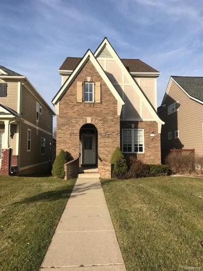 Auburn Hills Single Family Home For Sale: 3833 Forester Boulevard