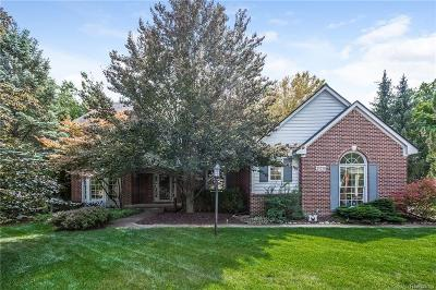 Novi Single Family Home For Sale: 25530 Arcadia Drive