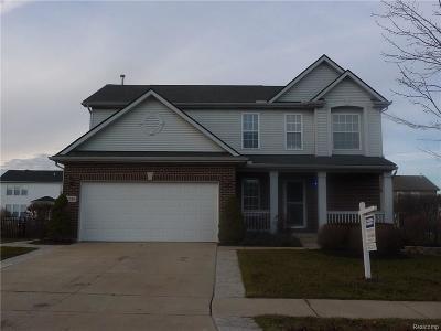 Flat Rock Single Family Home For Sale: 31380 Adora Lane