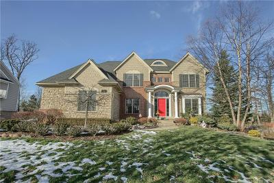 Bloomfield Twp Single Family Home For Sale: 110 Hadsell Drive
