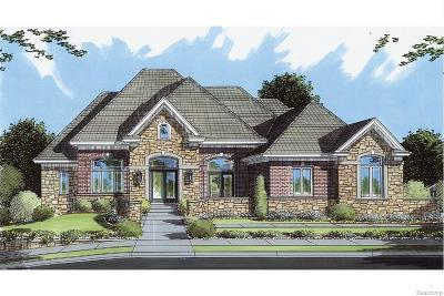 Sterling Heights, Washington, Washington Twp, Bloomfield Hills, Bloomfield Twp, Novi, Royal Oak, Royal Oak Twp Single Family Home For Sale: Overbrook