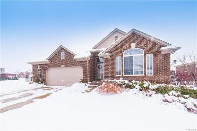 MACOMB Single Family Home For Sale: 22539 Timbercrest Drive