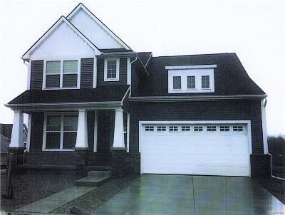 City Of The Vlg Of Clarkston, Clarkston, Independence Twp Single Family Home For Sale: S Main Street
