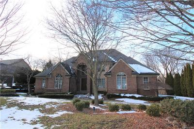 Northville Single Family Home For Sale: 17385 Rolling Woods Circle