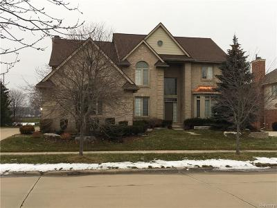 Canton Single Family Home For Sale: 48200 Gladstone Road