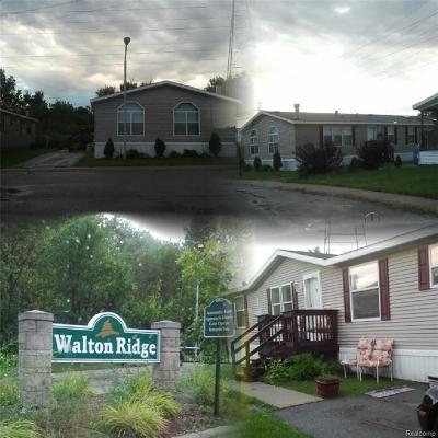 Pontiac Single Family Home For Sale: 1236 Galloway Circle Circle