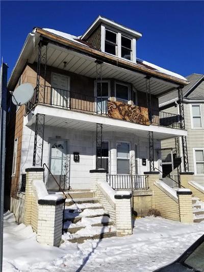 Hamtramck Multi Family Home For Sale: 3193 Hanley Street