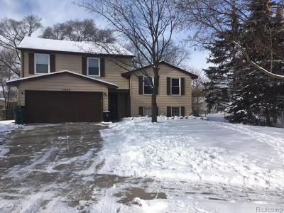 Salem, Salem Twp, Plymouth, Plymouth Twp Single Family Home For Sale: 11169 Chestnut Drive