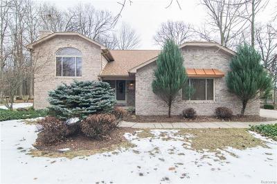 Huron Twp Single Family Home For Sale: 28503 Margaret Lane