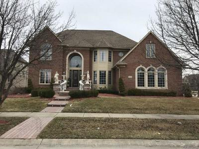 Shelby Twp Single Family Home For Sale: 51124 Clear Spring Lane