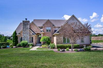 City Of The Vlg Of Clarkston, Clarkston, Independence, Independence Twp Single Family Home For Sale: 4893 Menominee Lane