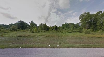 Montrose Twp MI Residential Lots & Land For Sale: $90,000