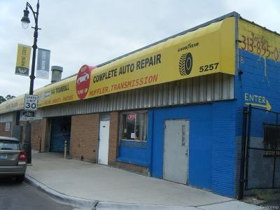 Detroit MI Commercial For Sale: $1,600,000