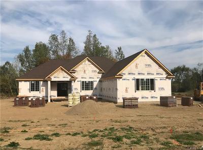 White Lake Single Family Home For Sale: 6511 Teluride Drive