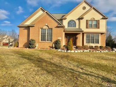 West Bloomfield Twp Single Family Home For Sale: 1975 Bloomfield Oaks Drive
