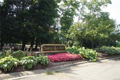 Bloomfield Twp Residential Lots & Land For Sale: 9999 Meadowood