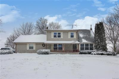 Ingham County Single Family Home For Sale: 3943 Morrice Road