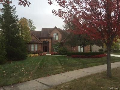 Northville Single Family Home For Sale: 16843 Abby Circle