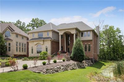 West Bloomfield Twp Single Family Home For Sale: 5650 Branford