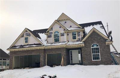 Milford Twp Single Family Home For Sale: 540 Napa Valley Drive