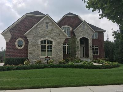Shelby Twp Single Family Home For Sale: 5960 Shadydale Drive