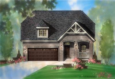 Auburn Hills Single Family Home For Sale: 3996 Ashton Drive