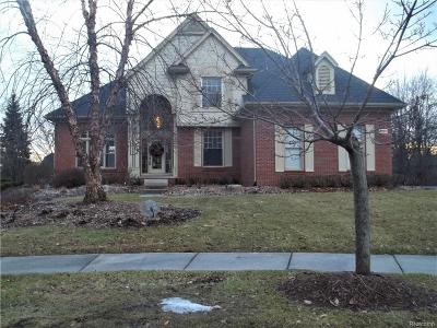 West Bloomfield Twp Single Family Home For Sale: 6545 Pembridge Hill