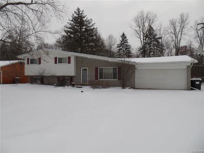 Rochester, Rochester Hills, Shelby Twp Single Family Home For Sale: 6060 Malzahn Drive