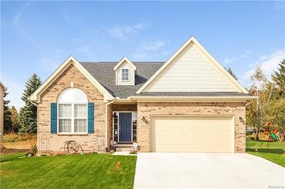 Lyon Twp MI Single Family Home For Sale: $279,900