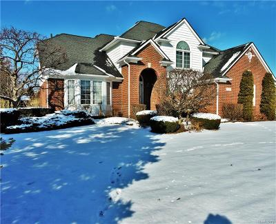 Shelby Twp Single Family Home For Sale: 14289 Patterson Drive