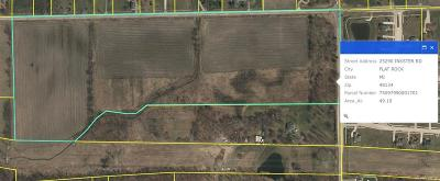 Huron Twp Residential Lots & Land For Sale: 25290 Inkster Road