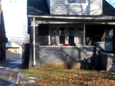 Single Family Home For Sale: 20144 Stotter